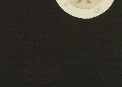 Estampe diptera gravée sur laiton et imprimée à la main. Texte rajouté à l'encre de chine. Chaque impression est unique et numérotée.