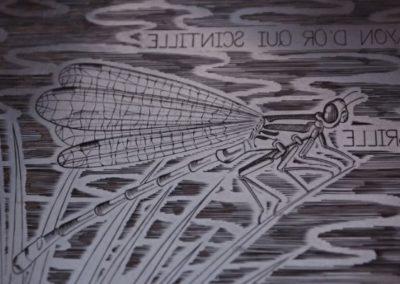 """détail de la plaque de l'estampe """"la demoiselle"""". Focus sur la libellule."""