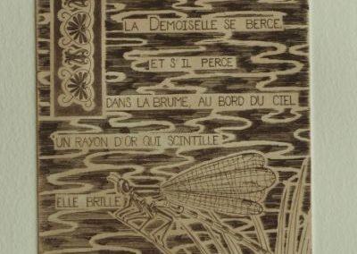 """estampe """"la demoiselle"""", représentant une libellule sur un fond de marais avec le texte suivant: la demoiselle se berce et s'il perce dans la brume au bord du ciel un rayon d'or qui scintille elle brille comme un regard d' Ariel."""